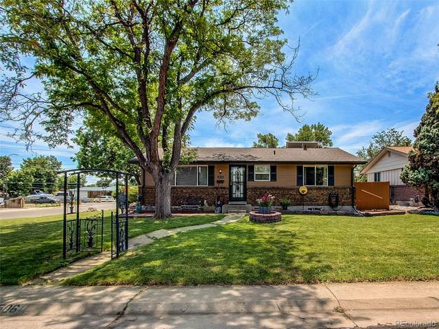 8506 W Utah Avenue, Lakewood, CO 80232 (#6518484) :: Wisdom Real Estate