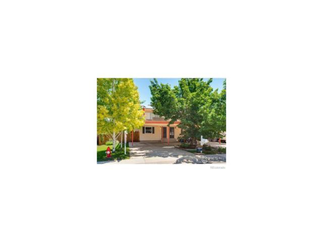 450 S Dover Avenue, Lafayette, CO 80026 (MLS #6520927) :: 8z Real Estate