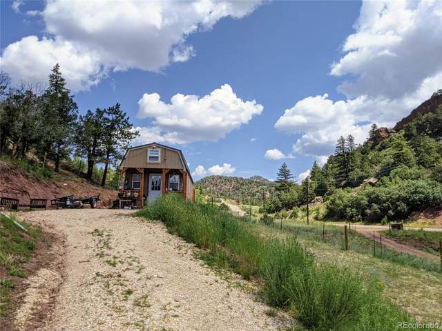 7965 County Road 12, Cotopaxi, CO 81223 (#6526052) :: Finch & Gable Real Estate Co.