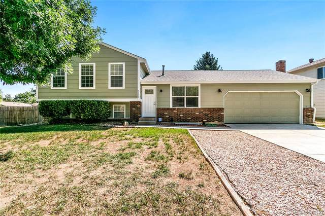 3100 Appaloosa Court, Fort Collins, CO 80526 (#6530393) :: The Heyl Group at Keller Williams