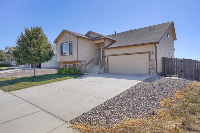 6003 Passing Sky Drive, Colorado Springs, CO 80911 (#6530650) :: The HomeSmiths Team - Keller Williams