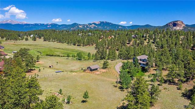 1919 Nova Road, Pine, CO 80470 (#6531366) :: The DeGrood Team