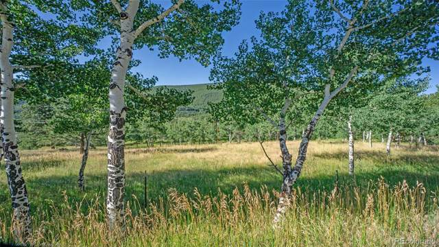 Old Squaw Pass Road, Evergreen, CO 80439 (MLS #6531538) :: 8z Real Estate