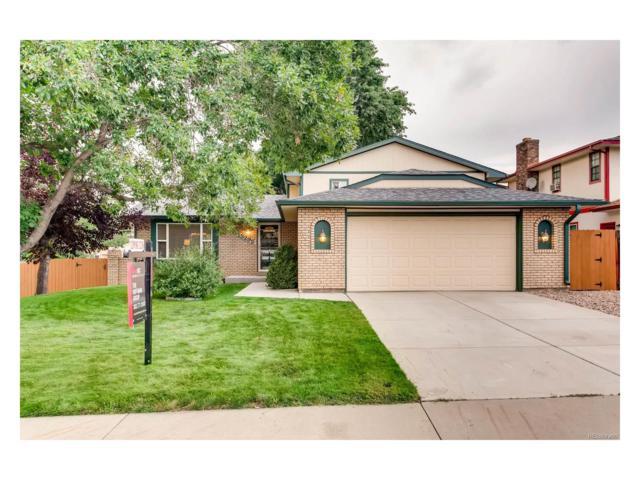 13295 W Chenango Avenue, Morrison, CO 80465 (MLS #6533413) :: 8z Real Estate