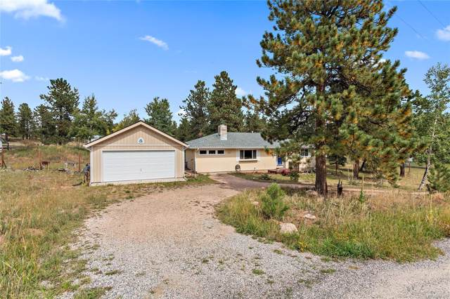 71 Mohawk Trail, Pine, CO 80470 (#6533454) :: The DeGrood Team