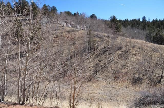 400 Last Dollar Drive, Cripple Creek, CO 80813 (#6533506) :: milehimodern
