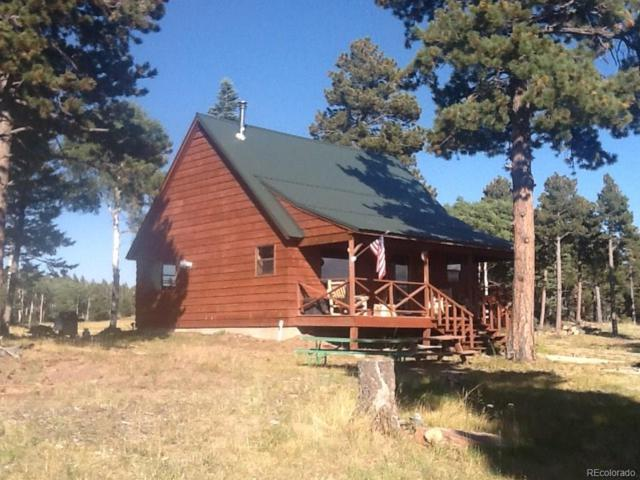 3830 Powers Road, Fort Garland, CO 81133 (#6535679) :: Wisdom Real Estate