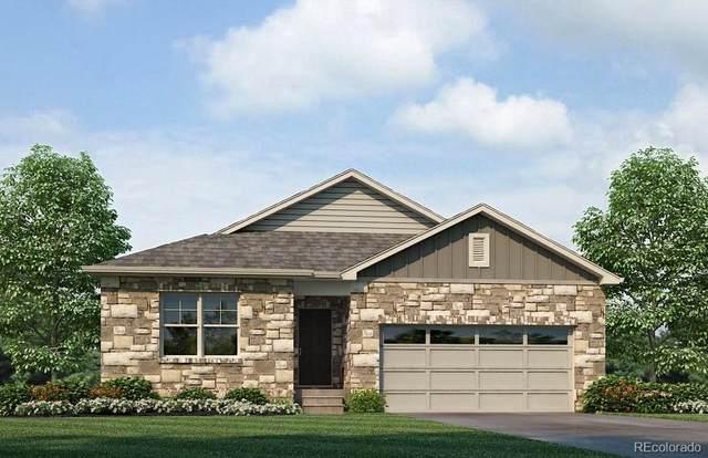 4798 Fiadore Lane, Castle Rock, CO 80104 (MLS #6536130) :: Clare Day with Keller Williams Advantage Realty LLC