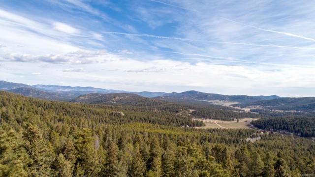 29379 Thunderbolt Circle, Conifer, CO 80433 (#6537468) :: 5281 Exclusive Homes Realty