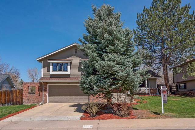 7666 S Olive Circle, Centennial, CO 80112 (#6538352) :: The Heyl Group at Keller Williams