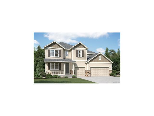 11208 Ledges Road, Parker, CO 80134 (#6538593) :: The Peak Properties Group