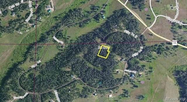 33345 Appaloosa Way, Oak Creek, CO 80467 (#6541440) :: The Margolis Team