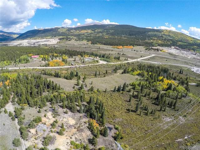 Undefined Road, Alma, CO 80420 (MLS #6545523) :: 8z Real Estate