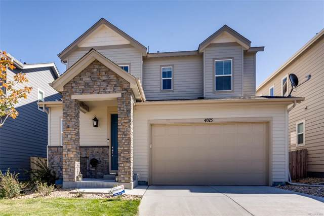 4075 Trail Stone Circle, Castle Rock, CO 80108 (#6546269) :: The HomeSmiths Team - Keller Williams