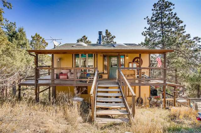 186 Bunny Road, Bailey, CO 80421 (#6547448) :: Mile High Luxury Real Estate