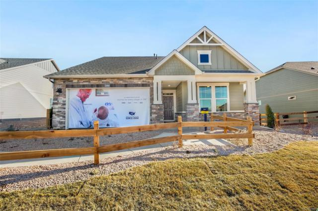 15556 Spruce Circle, Thornton, CO 80602 (MLS #6547990) :: 8z Real Estate