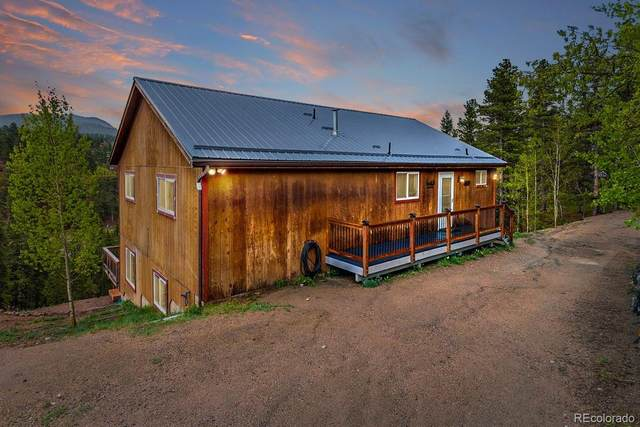 191 Renaud Road, Bailey, CO 80421 (MLS #6549331) :: Kittle Real Estate