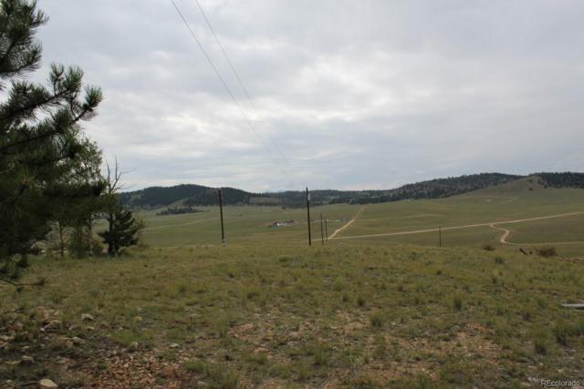 111 Mesa Verde Way, Hartsel, CO 80449 (#6552274) :: The Heyl Group at Keller Williams