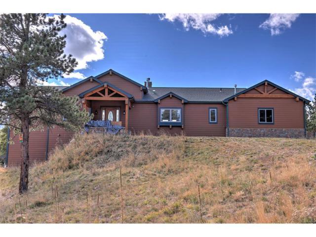172 Wolf Song Lane, Idaho Springs, CO 80452 (MLS #6552897) :: 8z Real Estate