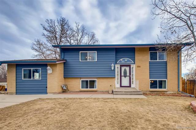 950 S Briarwood Drive, Lakewood, CO 80226 (#6555603) :: Hudson Stonegate Team
