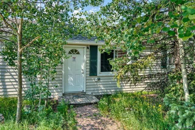 64 Reiling Road, Breckenridge, CO 80424 (#6556346) :: Stephanie Fryncko | Keller Williams Integrity