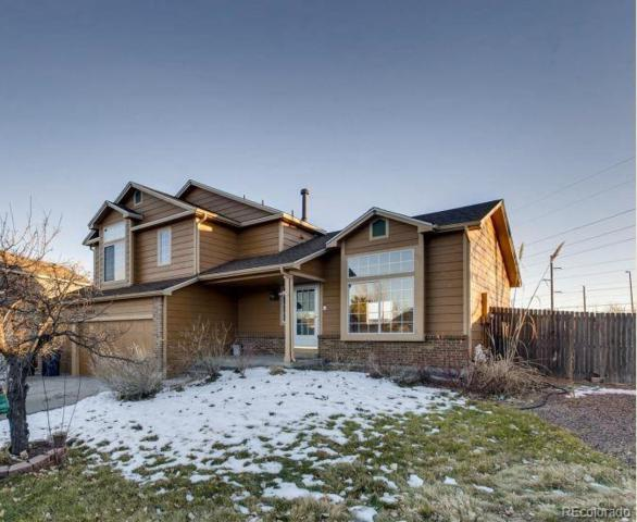 3968 Ashcroft Avenue, Castle Rock, CO 80104 (#6564161) :: Sellstate Realty Pros
