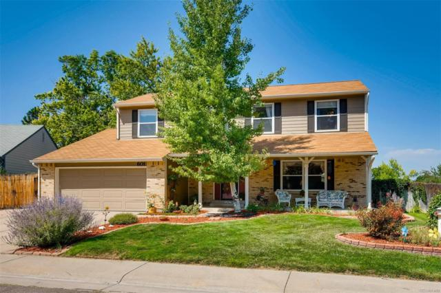 601 E Nichols Drive, Littleton, CO 80122 (#6564382) :: Wisdom Real Estate