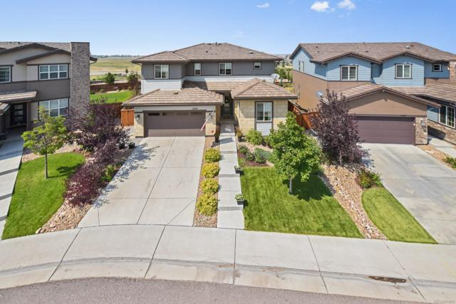 10887 Pastel Point, Parker, CO 80134 (#6564731) :: Briggs American Properties