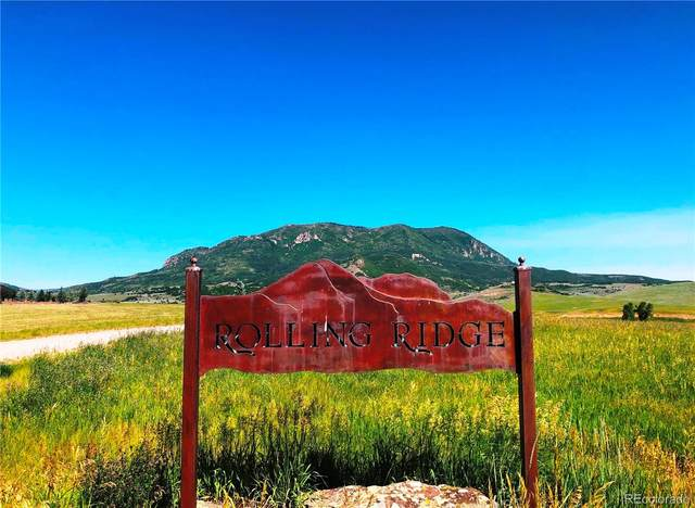 25700 Prairie Place, Steamboat Springs, CO 80487 (MLS #6565269) :: 8z Real Estate