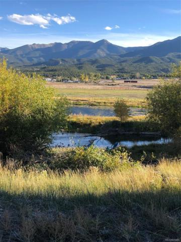 305 Two Rivers Road, Salida, CO 81201 (#6566482) :: Wisdom Real Estate