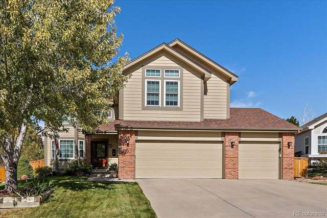 10227 Hexton Court, Lone Tree, CO 80124 (#6567950) :: The Harling Team @ Homesmart Realty Group