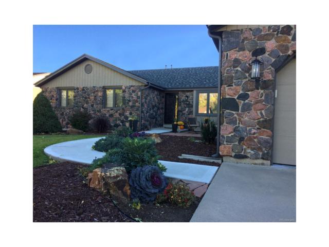 3750 Vivian Court, Wheat Ridge, CO 80033 (#6570198) :: Thrive Real Estate Group