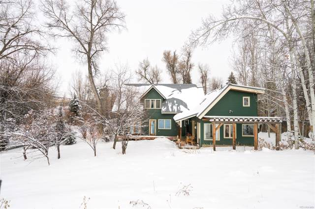 61 Butcherknife Alley, Steamboat Springs, CO 80487 (#6571986) :: Wisdom Real Estate
