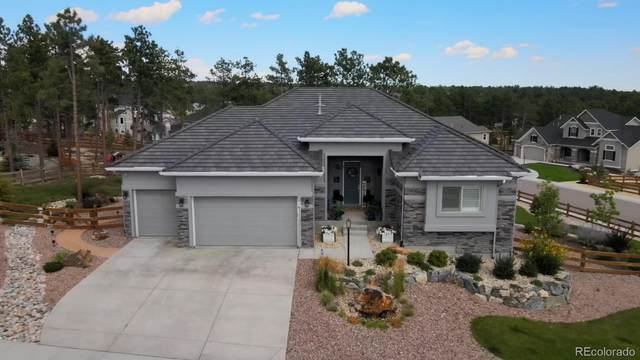 16225 Thunder Cat Way, Monument, CO 80132 (#6573376) :: Bring Home Denver with Keller Williams Downtown Realty LLC