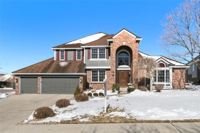 1151 Phipps Place, Highlands Ranch, CO 80126 (#6575056) :: The Gilbert Group
