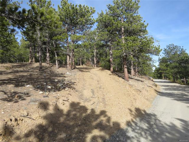 223 County Road 128N, Nederland, CO 80466 (#6578589) :: The Peak Properties Group