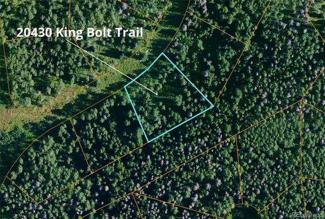 20430 King Bolt Trail, Oak Creek, CO 80467 (#6578764) :: The DeGrood Team