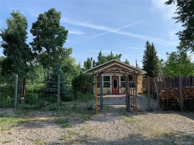 208 Neighbors Lane, Buena Vista, CO 81211 (#6582255) :: Venterra Real Estate LLC