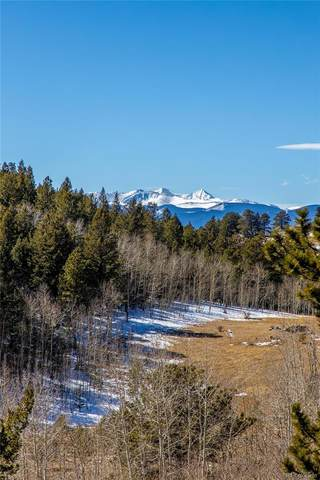 Red Tail Road, Golden, CO 80403 (#6582782) :: Symbio Denver