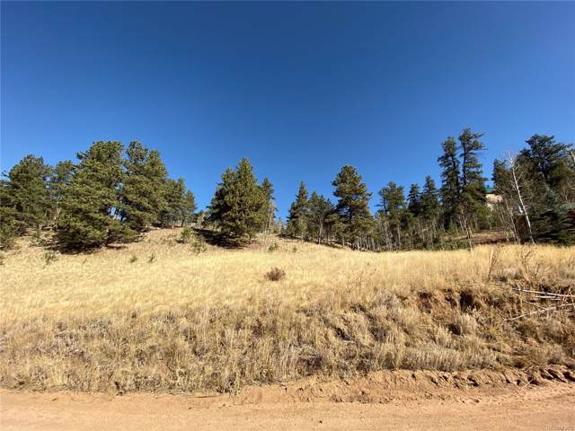 295 Bishop Road, Bailey, CO 80421 (#6584090) :: The Gilbert Group