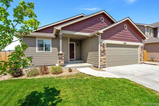 6689 6th Street, Frederick, CO 80530 (#6589177) :: The DeGrood Team