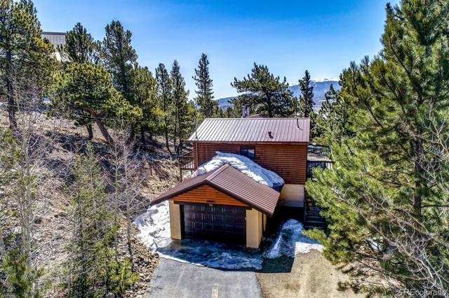 86 La Plata Peak Drive, Twin Lakes, CO 81251 (#6596649) :: The DeGrood Team