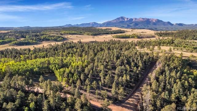 LOT 25 Rampart Range Road, Colorado Springs, CO 80921 (#6597382) :: iHomes Colorado