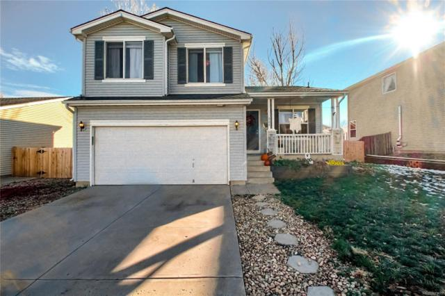 8188 Eagleview Drive, Littleton, CO 80125 (#6598852) :: House Hunters Colorado