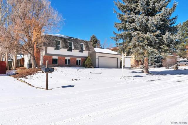 2224 Peacemaker Terrace, Colorado Springs, CO 80920 (MLS #6599693) :: 8z Real Estate