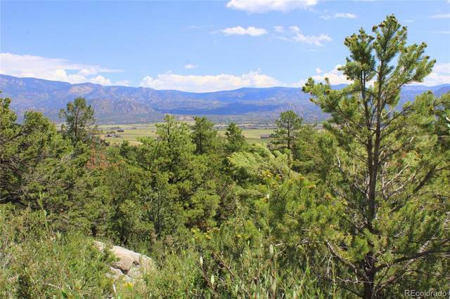 30267 Princeton Hills, Buena Vista, CO 81211 (MLS #6601539) :: 8z Real Estate