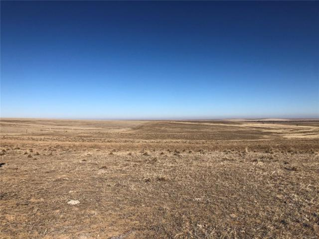 9 County Road 170, Agate, CO 80101 (#6602801) :: The Peak Properties Group