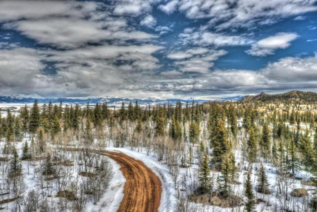 1277 Wampum Lane, Como, CO 80432 (#6608016) :: Compass Colorado Realty