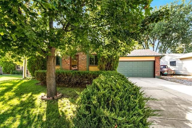 3233 Mcintosh Court, Loveland, CO 80538 (MLS #6614008) :: Kittle Real Estate