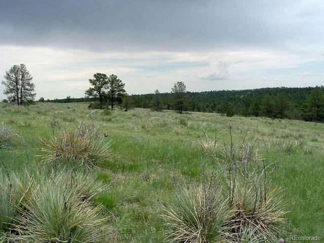 23578 E Lost Creek Trail, Agate, CO 80101 (#6616325) :: The DeGrood Team